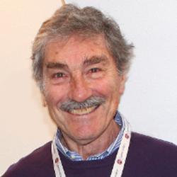 Massimo Signoretti